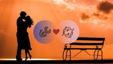Photo of التوافق بين برج العقرب والحوت في الحب والعلاقة والجنس