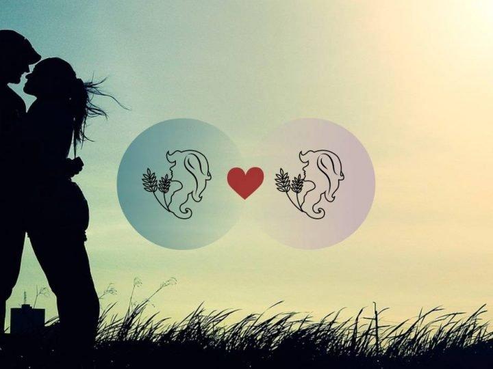 العذراء والعذراء التوافق في الحب والزواج والعلاقة والجنس