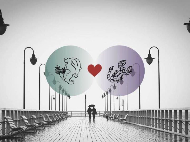 العذراء والعقرب التوافق في الحب والزواج والعلاقة والجنس